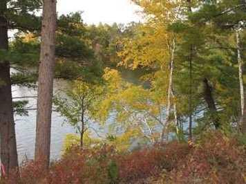 L93 East Shore Trail - Photo 21