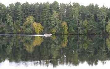 L38 Lake Edge Trail - Photo 17