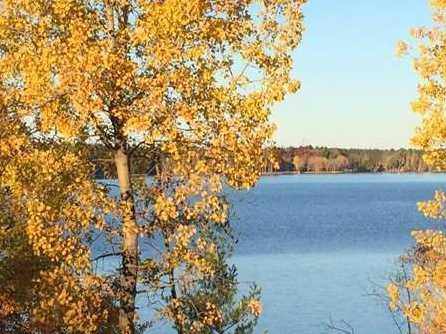 L38 Lake Edge Trail - Photo 7