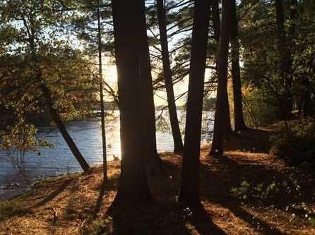 L38 Lake Edge Trail - Photo 11