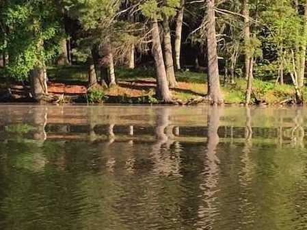 L38 Lake Edge Trail - Photo 25