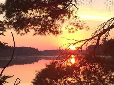 L38 Lake Edge Trail - Photo 13