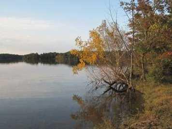 L38 Lake Edge Trail - Photo 15