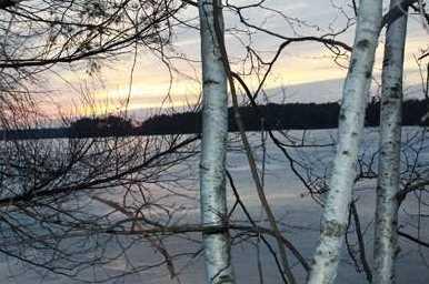 L38 Lake Edge Trail - Photo 19