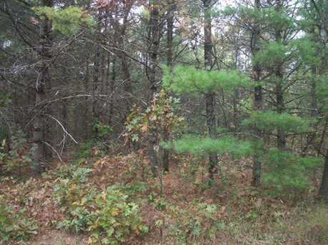 40 Ac Bear Rd - Photo 5