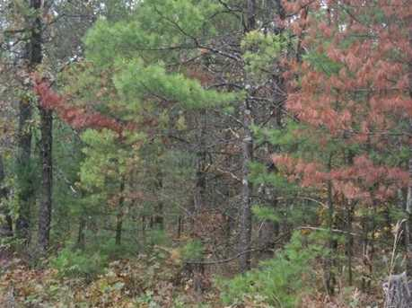40 Ac Bear Rd - Photo 7