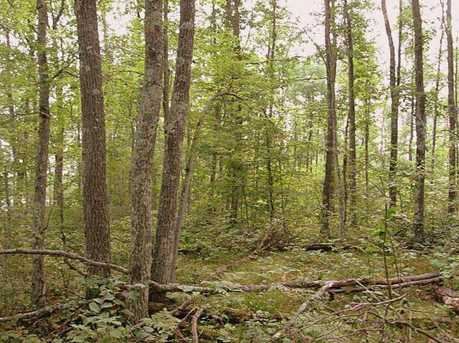 Lot 19 Tanglewood Pkwy - Photo 5