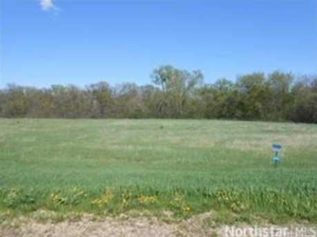964 150th (Lot 32) Ave - Photo 1