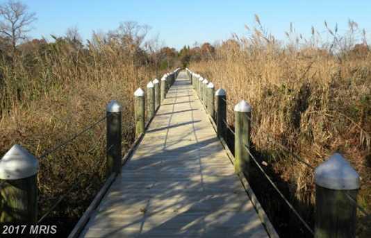 Pond Creek Lane - Photo 19