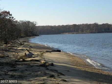 Pond Creek Lane - Photo 27