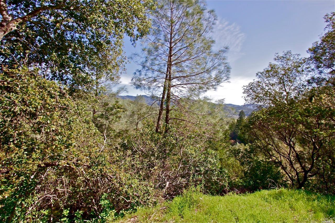 Additional photo for property listing at 0 Silverado Trail  CALISTOGA, CALIFORNIA 94515