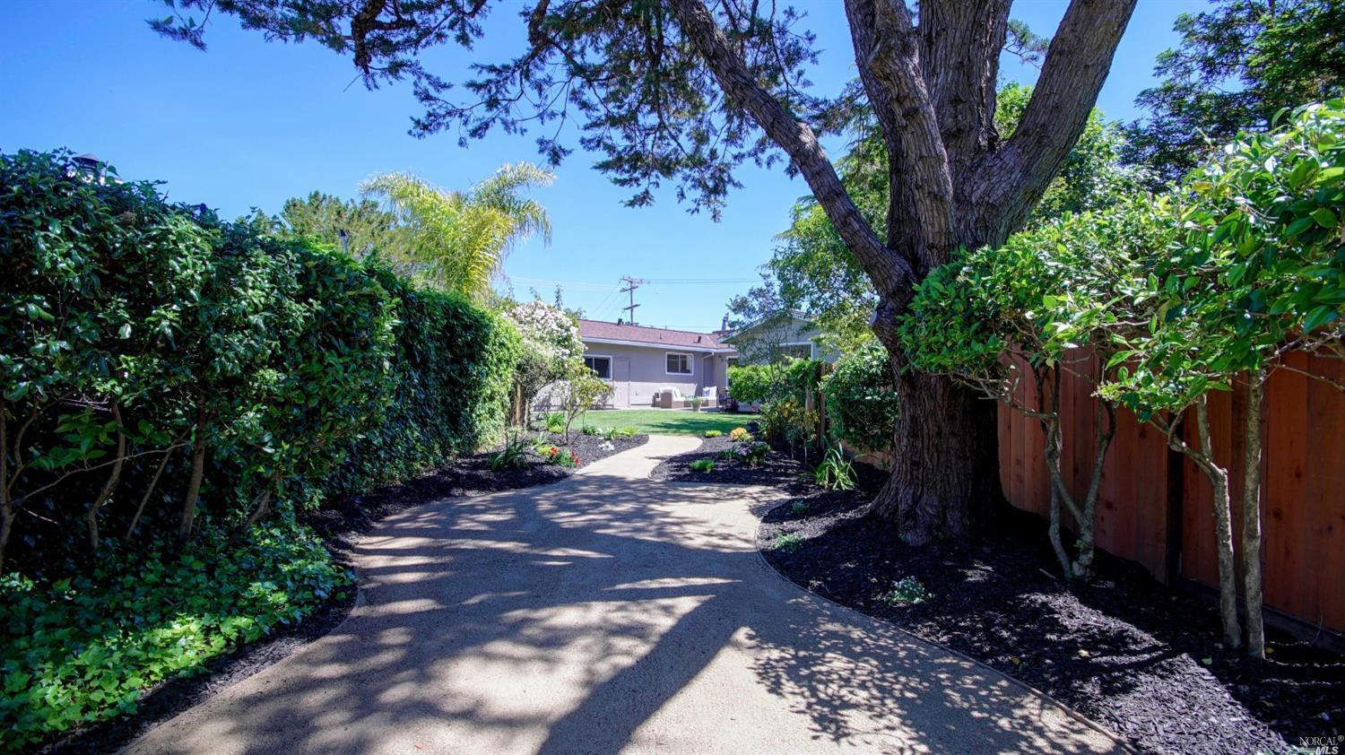 Additional photo for property listing at 82 Birch Avenue  CORTE MADERA, CALIFORNIA 94925