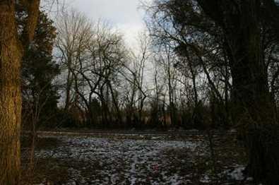 15 Pine Run Lane - Photo 11