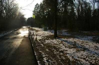 15 Pine Run Lane - Photo 7