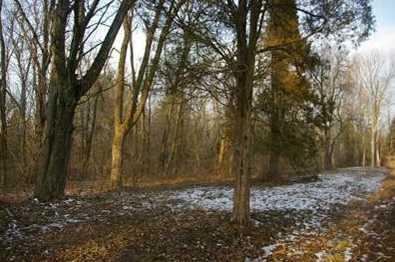 18 Pine Run Lane - Photo 9