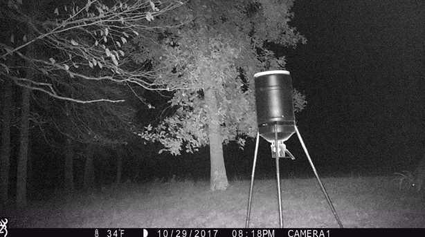 6705 Camp Creek Rd - Photo 21