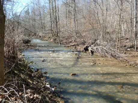 1178 Pond Run Rd - Photo 3