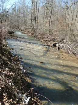 1178 Pond Run Rd - Photo 9