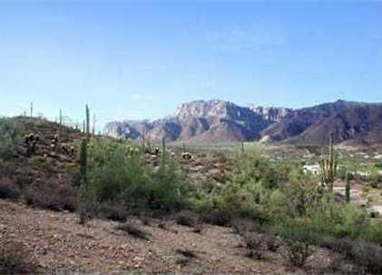 5406 S Gold Canyon Drive - Photo 1