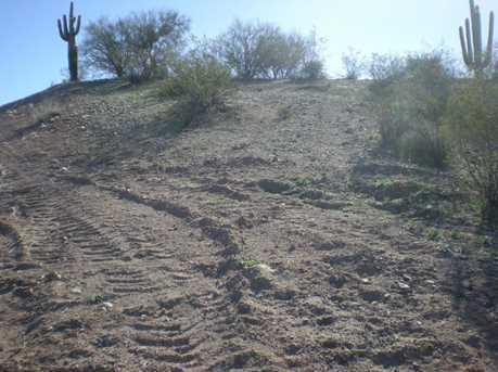 Lot # 24 N Blue Tank Trail - Photo 3