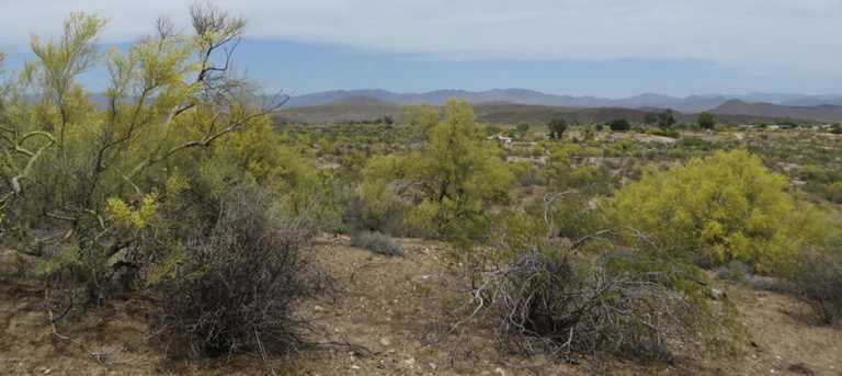 0 S Rancho Casitas Road - Photo 2
