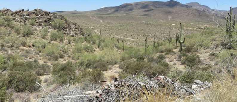 0000005 E Lone Mountain Road - Photo 6