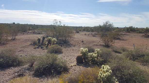 5301 E Prickly Pear Road - Photo 5