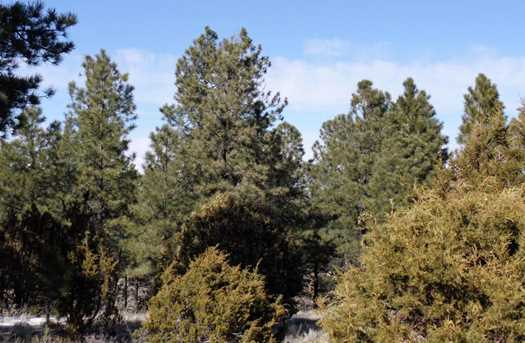Lot 14 Red Cabin Ranch Estates - Photo 3