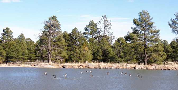 Lot 14 Red Cabin Ranch Estates - Photo 9