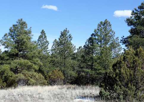 Lot 14 Red Cabin Ranch Estates - Photo 5