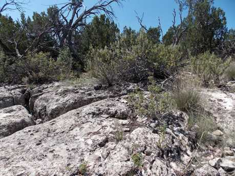 3154 Trails End - Photo 3