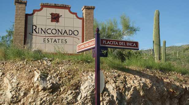 3061 N Placita De Nazca - Photo 5
