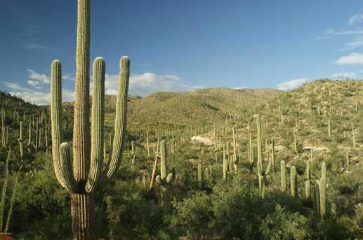 3061 N Placita De Nazca - Photo 29