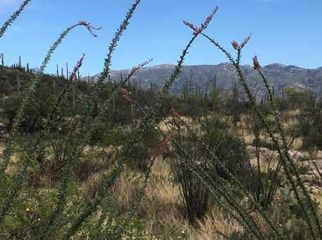 3061 N Placita De Nazca - Photo 41