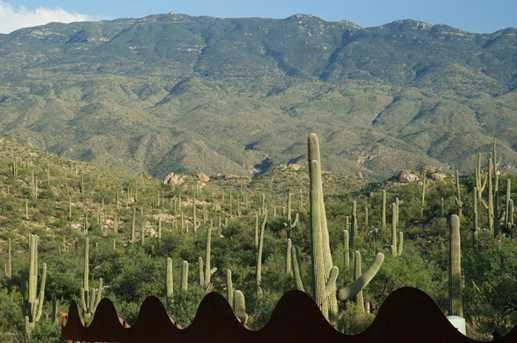 3061 N Placita De Nazca - Photo 27