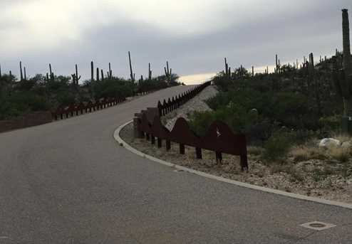 3061 N Placita De Nazca - Photo 35
