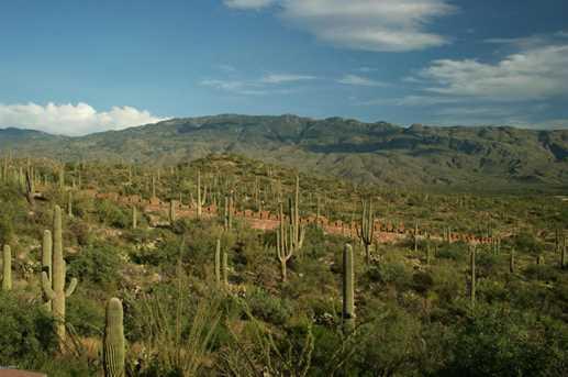 3061 N Placita De Nazca - Photo 25