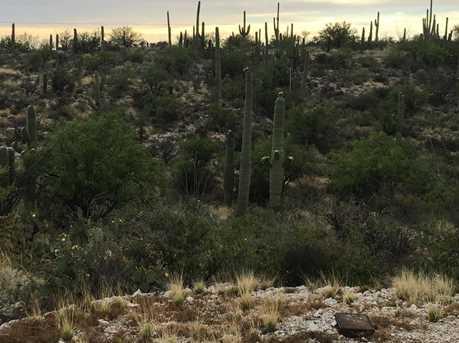 3061 N Placita De Nazca - Photo 43