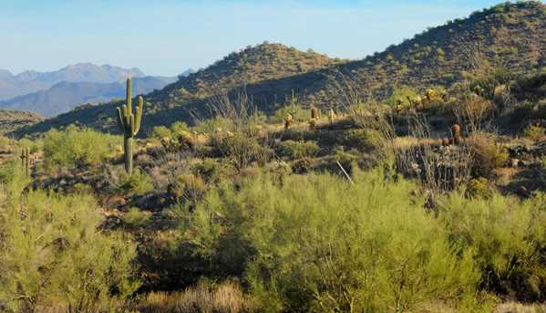 16521 N Borrego Trail - Photo 7