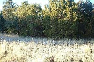 1426 W Antelope Lane - Photo 1