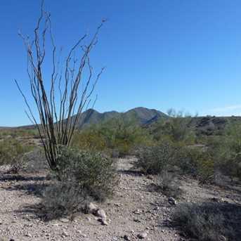 13Xxx N Blue Coyote Trail - Photo 7