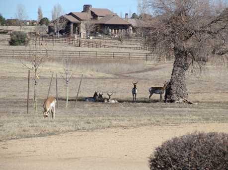 9285 N American Ranch Road - Photo 37