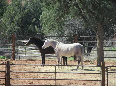5 Spirit Pony Trail - Photo 41