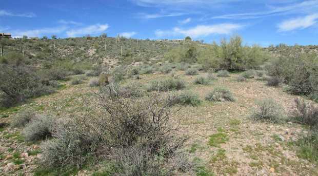 14402 N Lost Tank Trail - Photo 49