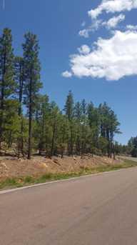 2281 S Bristle Cone Drive - Photo 3
