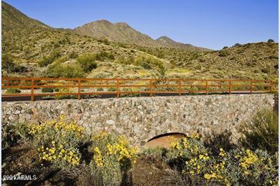 16020 N Ringtail Trail - Photo 1