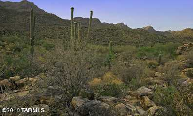 Old Ranch House Road #0 - Photo 11