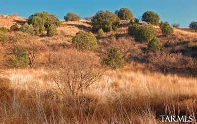 Lot 13 Sonoita Springs Ranch Rd #13 - Photo 9