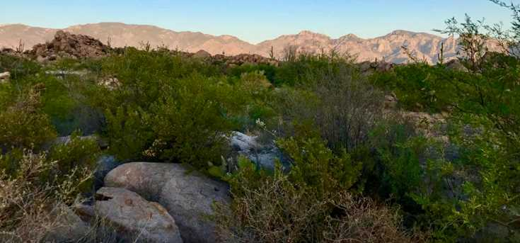 1525 Tortolita Mountain Circle #285 - Photo 11