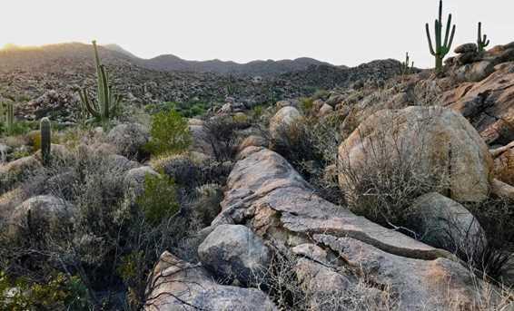 1525 Tortolita Mountain Circle #285 - Photo 9